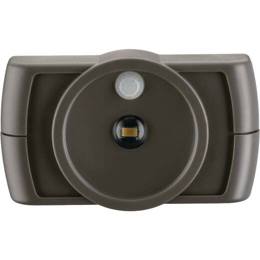 Mr. Beams Brown LED Battery Operated Light